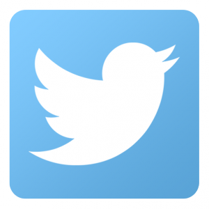 Twitter-icon.png-300x300