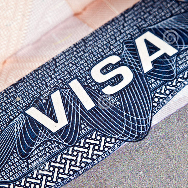 visa-600X600